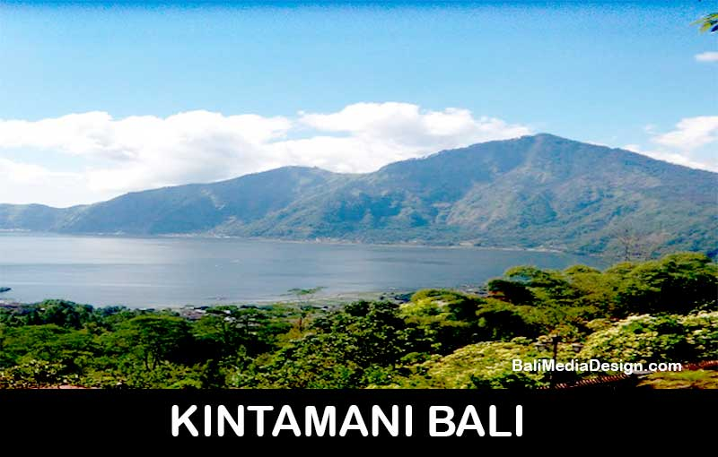 kinatamni-bali-tour | professional bali tour driver-private transport service-transportation service- bali day tours, bali day tour package
